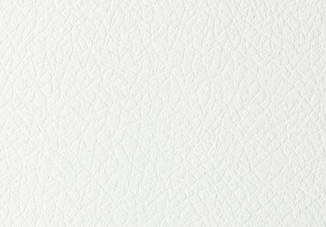 Bianco Fin. Spyder